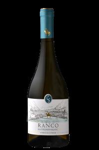 Ranco-Sauvignon-Blanc-2013
