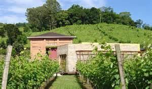 vinicola Vallontano