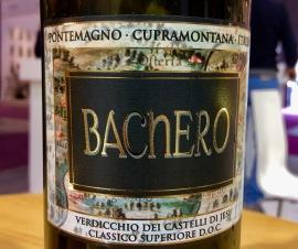 Vinitally Bachero