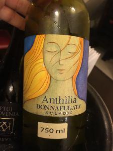 Anthilia - SQ